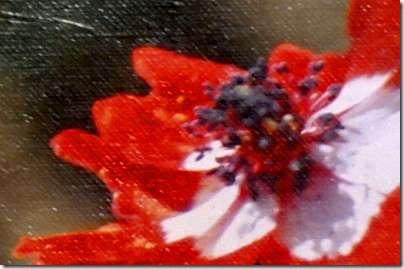 BAH01Abdul-Baha-With-Flowers-M5-16b-Part2